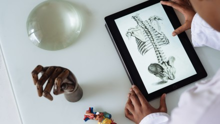 principles for transition to online learning, anatomy educators