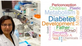 Amita Bansal, diabetes, diet, environment, chemicals, health
